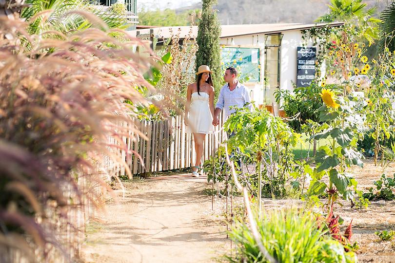 Cabo wedding photographers Ana & Jerome-22