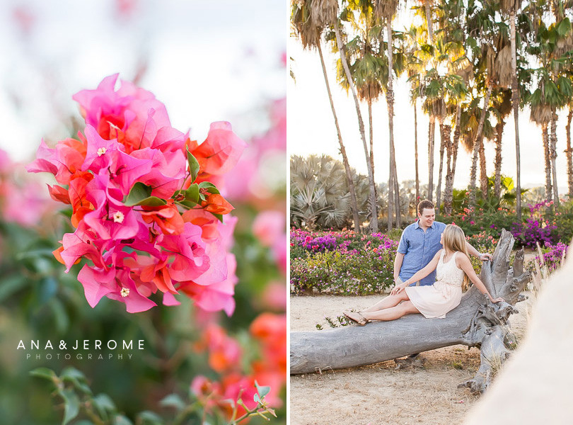 Cabo Wedding photographers Ana & Jerome at Sunset da Mona Lisa-10
