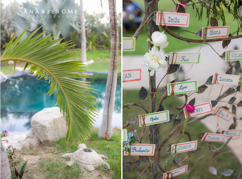 Cabo Wedding photography at Hacienda Oasis-5