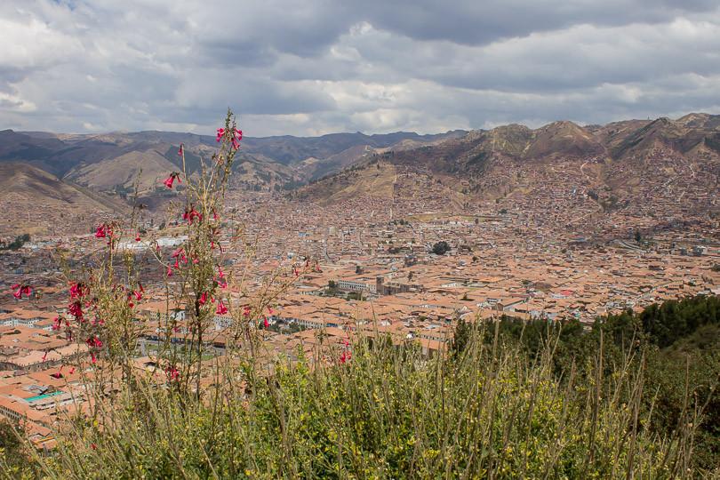 Cabo wedding photographers (Summer 2014)-103