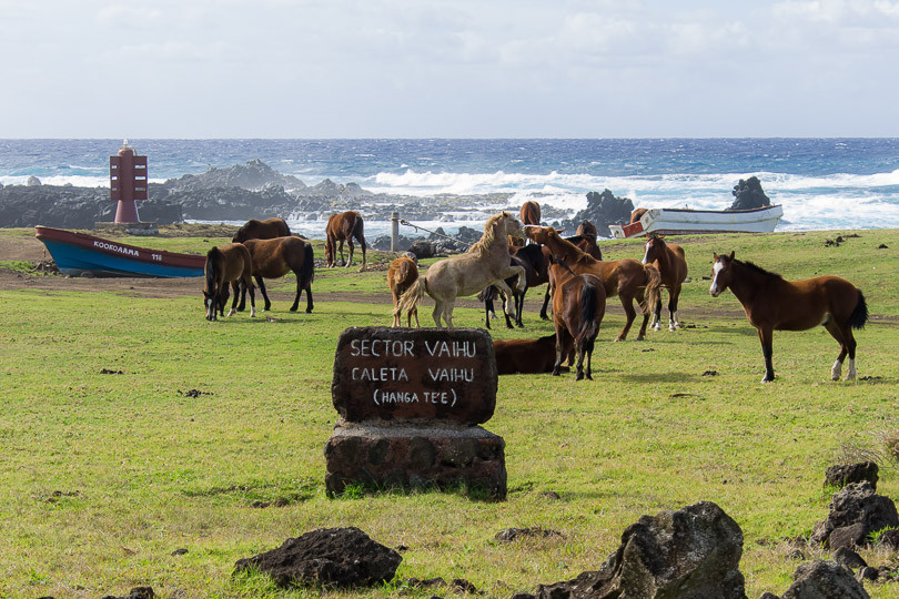 Cabo wedding photographers (Summer 2014)-149